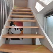 Treppe Treppenbau Schreinerei Mullers & Startz Buche Edelstahl Hehlrath005